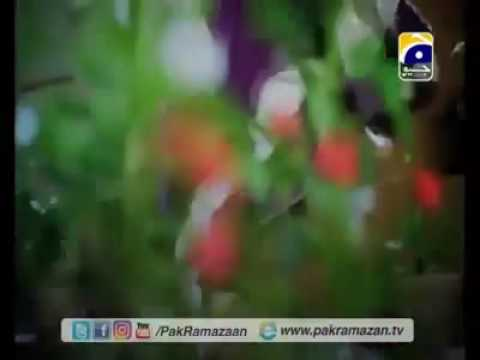 Ramzan Pak Geet By Dr Aamir Liaqat Hussain in Ramzan Transmission